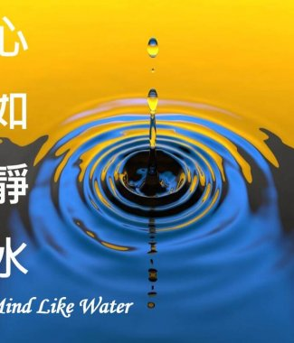 C2007 Mindlikewater -5th Generation Time Management System