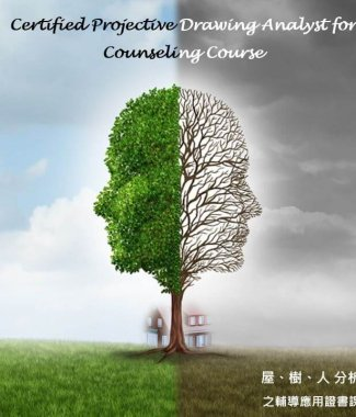 C2053 Certified Projective Drawing Analyst for Counselling Course (Class 11)